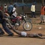 Repubblica Centrafricana: è mattanza di civili