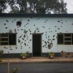 A 20 anni dal massacro in Rwanda
