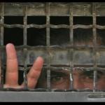 Prigionieri palestinesi di nuovo in sciopero della fame