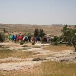 FOTO. Sud di Hebron: lotta per la terra