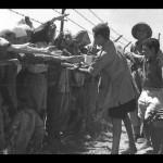 """""""Agli albori di Israele, lavoro forzato palestinese per sostenere il nuovo Stato"""" – Prima Parte"""
