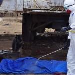 Ebola. In Africa occidentale 5 milioni di bambini senza scuola