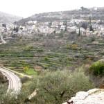 Battir è salva: la Corte Suprema israeliana dice no al muro