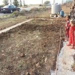 """Operazione Colomba: """"Il Libano sgombera i campi profughi siriani"""""""