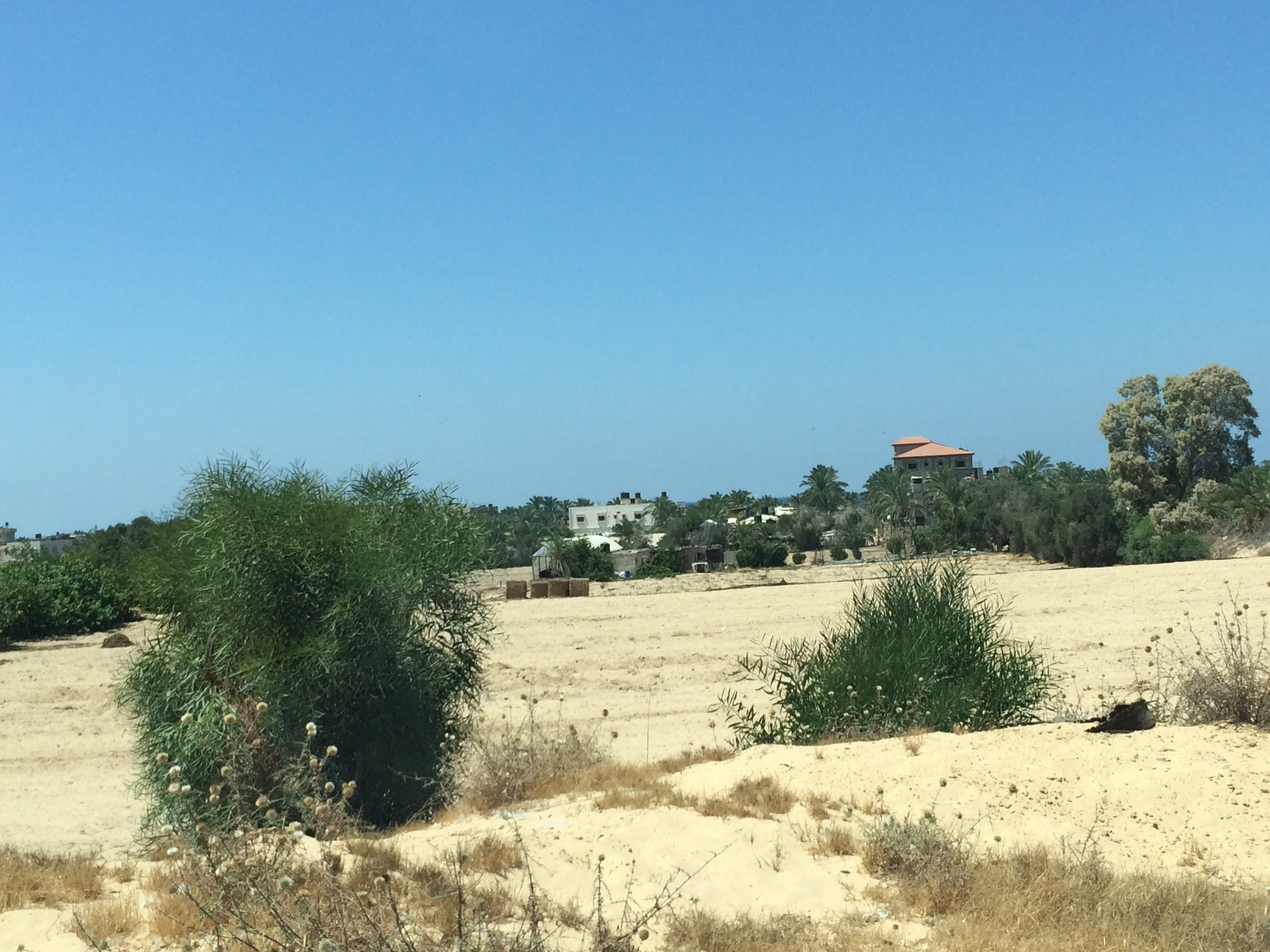 Gaza. La zona di Mawasi, fino a 10 anni fa occupata dai coloni israeliani. Foto di Federica Riccardi
