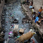 Sierra Leone libera dall'Ebola. Ma il paese non è ancora fuori pericolo