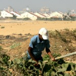 Pioggia di diserbanti su Gaza, Israele conferma «operazione di sicurezza»