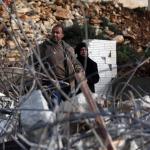 PALESTINA. Scioperi e raccolte fondi: una lotta multiforme