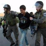 Amnesty: Israele liberi Mohammad al Hashlamoun