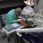 LIBANO. Il dentista di Shatila