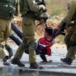 """OPINIONE. """"La Palestina torni patrimonio della sinistra"""""""