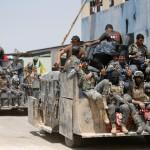 IRAQ. Fallujah, sulle milizie sciite l'ombra di abusi