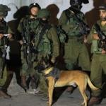 """CISGIORDANIA. Soldati israeliani sparano e uccidono """"per errore"""" un palestinese"""