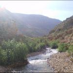 PALESTINA. Al Auja, dove l'acqua scorreva al contrario (Parte 2)