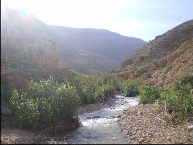 La sorgente di Al Auja (Foto: Patrizia Cecconi)