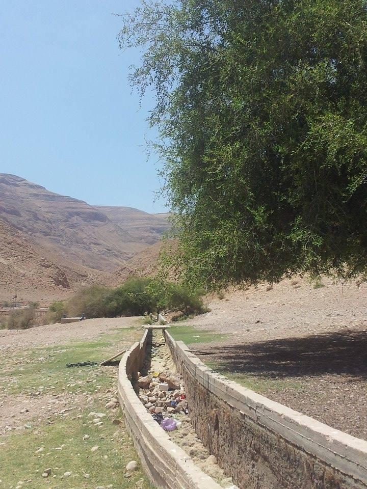 Al-Auja. Canalizzazione a pochi metri dalla sorgente asciutta. (Foto: Patrizia Cecconi)