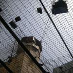 VIDEO. Hebron, storia di una città sotto occupazione