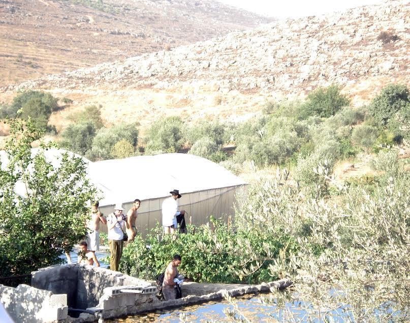 Coloni israeliani fanno il bagno in una vasca di raccolta dell'acqua piovana del villaggio palestinese di Wadi Fukin (foto di Alessandra Pellegrini De Luca)