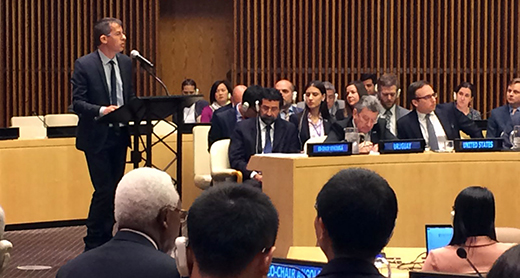 Il direttore di B'Tselem durante il suo discorso al Consiglio di sicurezza dell'Onu