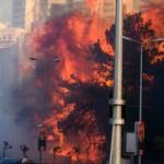 La risposta dei palestinesi agli incendi in Israele: se fossero intenzionali, sarebbe una follia