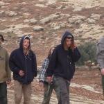 OPERAZIONE COLOMBA: nostri volontari e attivisti israeliani aggrediti da coloni