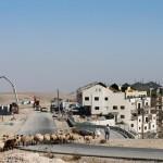 CISGIORDANIA. Colonie israeliane e disastro ambientale