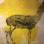 FOTO/VIDEO. Una gazzella zoppa nella Palestina storica