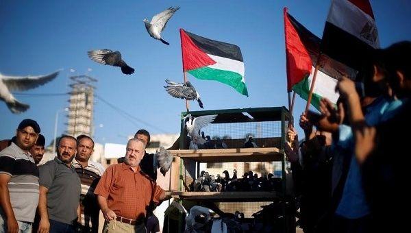 Gaza. (Foto tratta da Telesur)