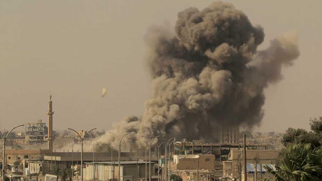 (Foto: Zohra Bensemra/Reuters)