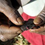 FOCUS ON AFRICA. Fatwa contro le mutilazioni genitali femminile nel Somaliland
