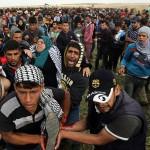 GAZA. «Non siamo pagati per farci ammazzare»