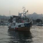 La Freedom Flotilla Coalition riparte da Palermo verso Gaza
