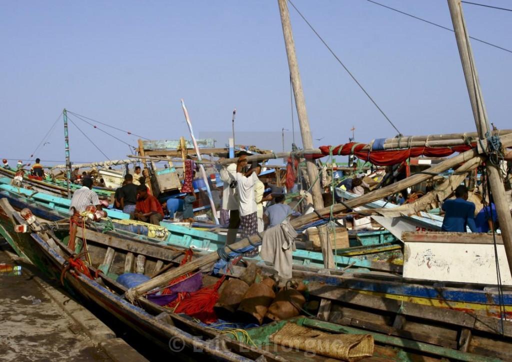 yemen pesca
