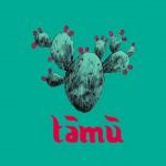 CULTURA. Parlare di Medio Oriente e Africa: apre la libreria Tamu