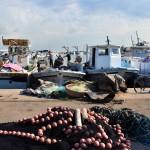 LIBANO. Il futuro incerto della pesca (Parte II)