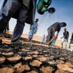 FOCUS ON AFRICA. Malnutrizione in Somalia, piano per combattere l'insicurezza nel Sahel