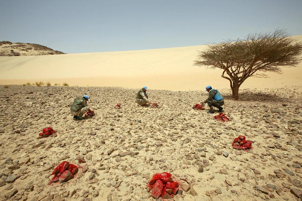foto di Martine Perret/UN