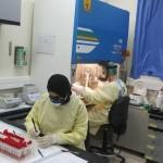 CORONAVIRUS. Emergenza contagi in Israele. Cisgiordania palestinese in lockdown
