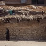 2013-2020. Sette anni di al-Sisi, miseria e repressione