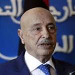 LIBIA. Accordo raggiunto in Libia: tregua e (forse) elezioni