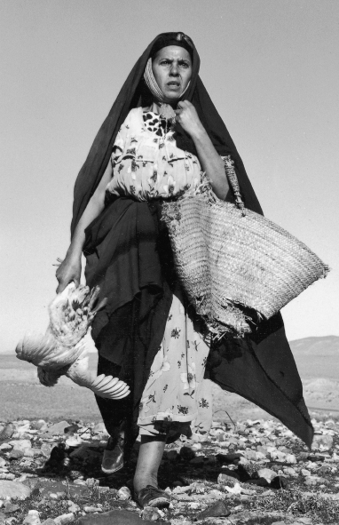 Le Vent des Aurès (Mohamed Lakdar Hamina, 1966)