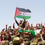 "INTERVISTA. ""Sahara Occidentale: indipendenza o morte"""