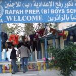 NENA IN PILLOLE. Palestina, Iraq, Sahara Occidentale